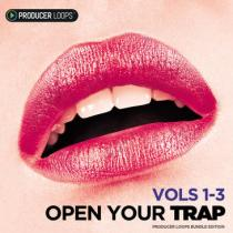 Producer Loops Open Your Trap Bundle WAV MIDI