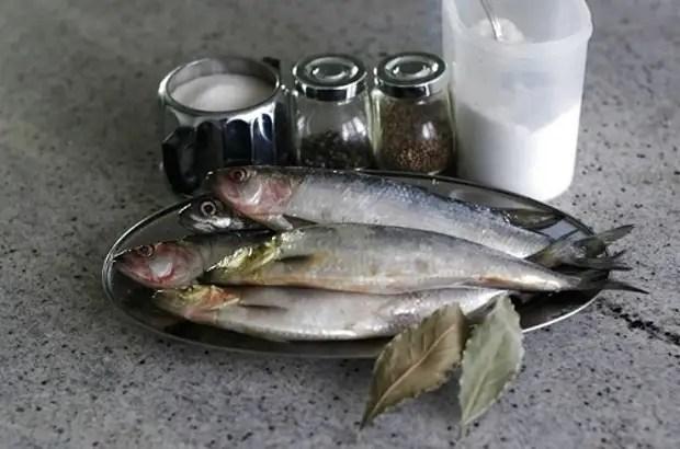 조리법 : 소금에 절인 청어 - 17 최고의 요리법. 집에서 청어에게 경의를 표하는 방법은 맛있는가?