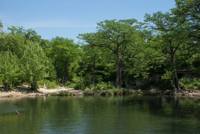 View of Onion Creek in Mckinney Falls State Park in Texas