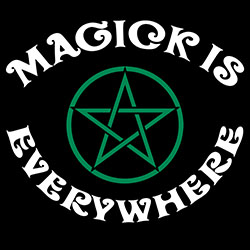 magick is everywhere pagan shirt