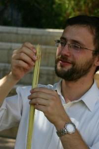 examining lulav