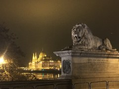 View of the Parliament building with the lion of the Chain Bridge in the foreground