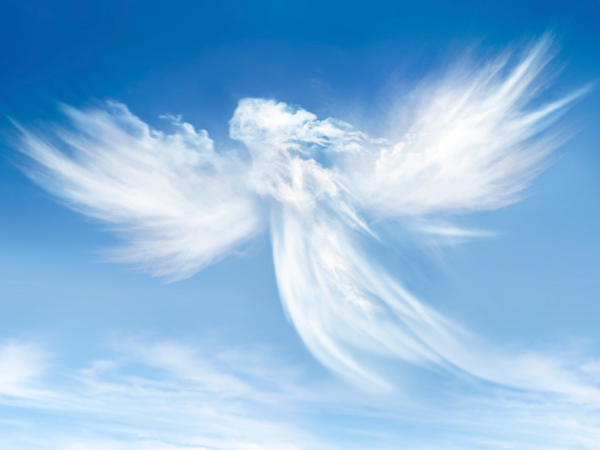 Shalom Aleichem |Who Are The Angels?