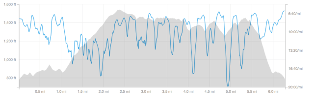 My Strava map of elevation and pace for leg 1