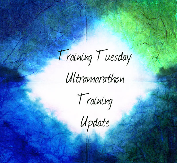 Ultramarathon Training Plan Update