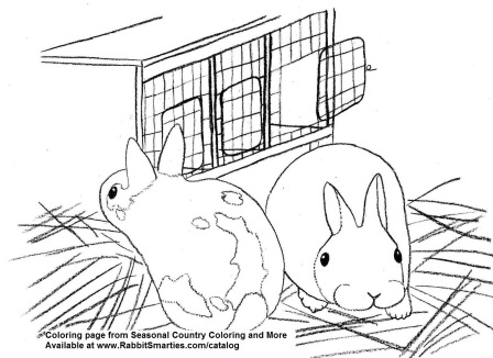 Baby Polish Bunnies and Hutch Cute Coloring Page