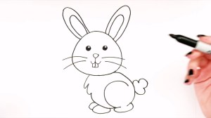 bunny draw easy drawing drawings simple rabbit step bunnies