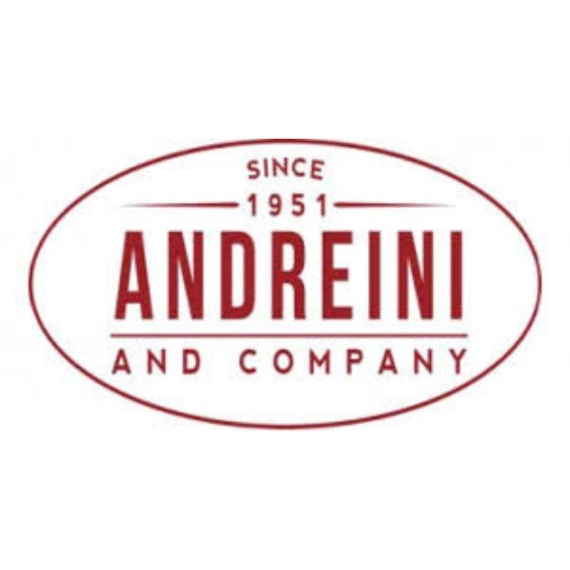 Andreini Logo