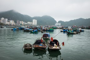 Boats sit in Cat Ba's harbor, with hotels visible in the background. While Cat Ba is a fairly large island, hotels are largely constrained to one main street along the water and a couple of side streets leading from it.