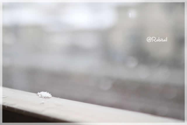 雪・雪山・霜柱&蜜柑