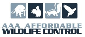 Affordable Wildlife Control logo, Raccoon Removal Toronto Service