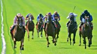 Official Irish Derby Guide | Curragh Race & Stay Packages ...