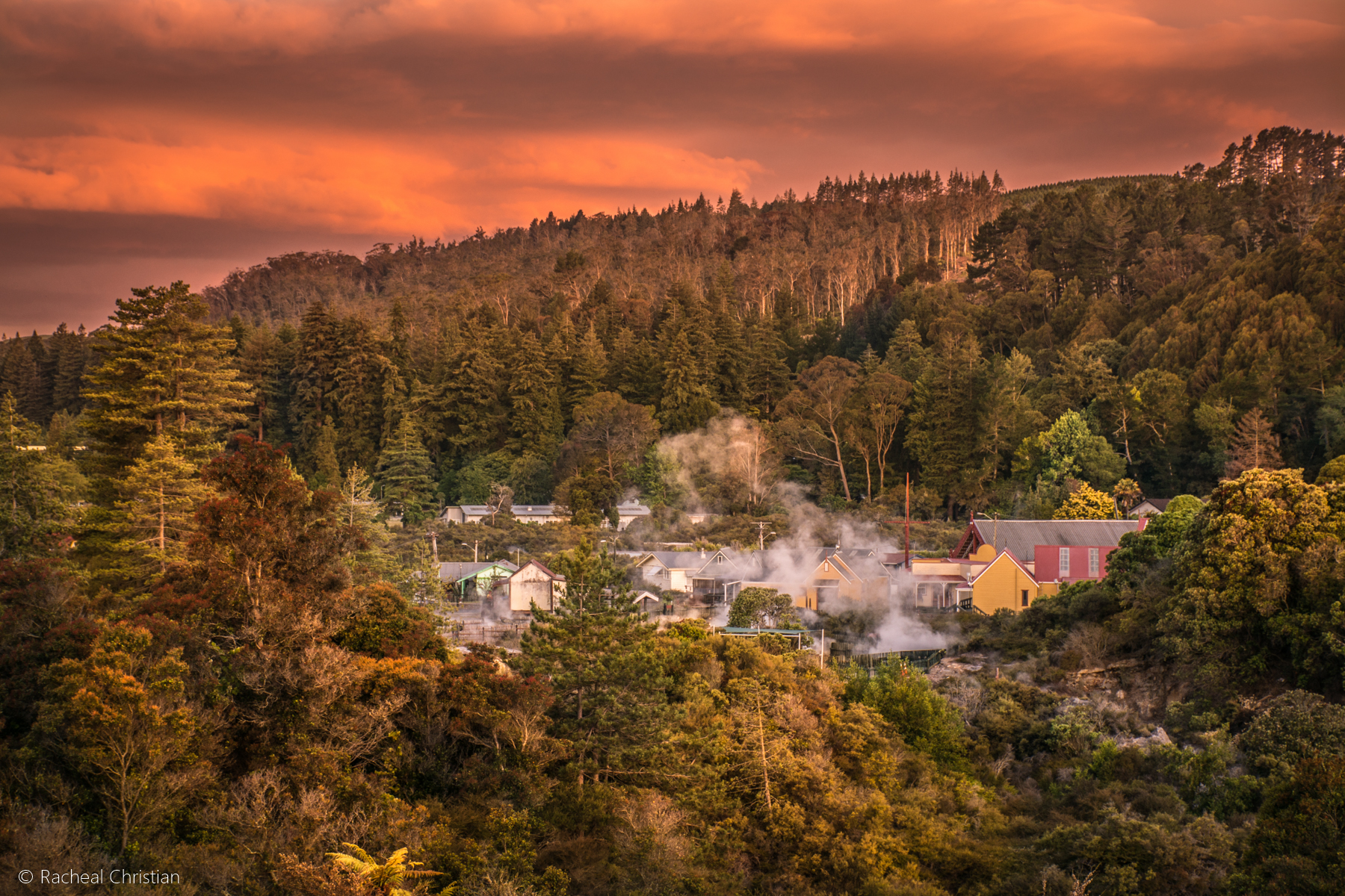 Photo Of The Week: Thermal Village Rotorua