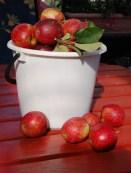 faire son jus de pomme