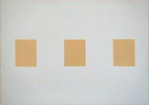 rachela abbate 1-field-research-by-rachela-abbate paintings