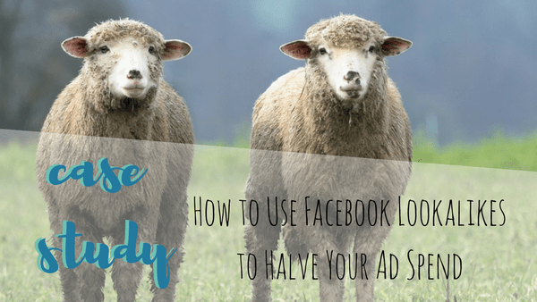 [CASE STUDY] How to Use Facebook Lookalikes to Halve Your Ad Spend