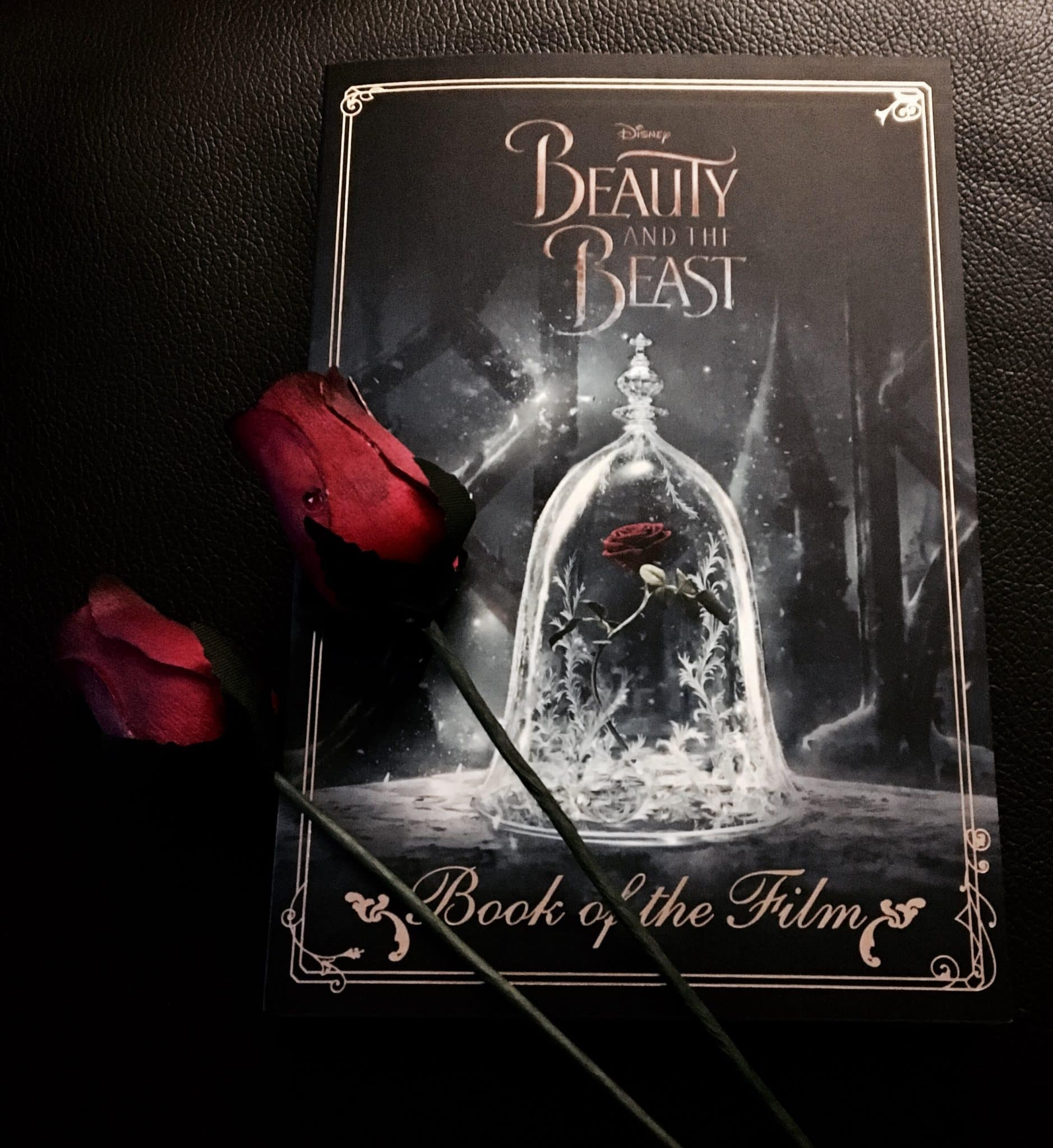 Book Review Beauty And The Beast