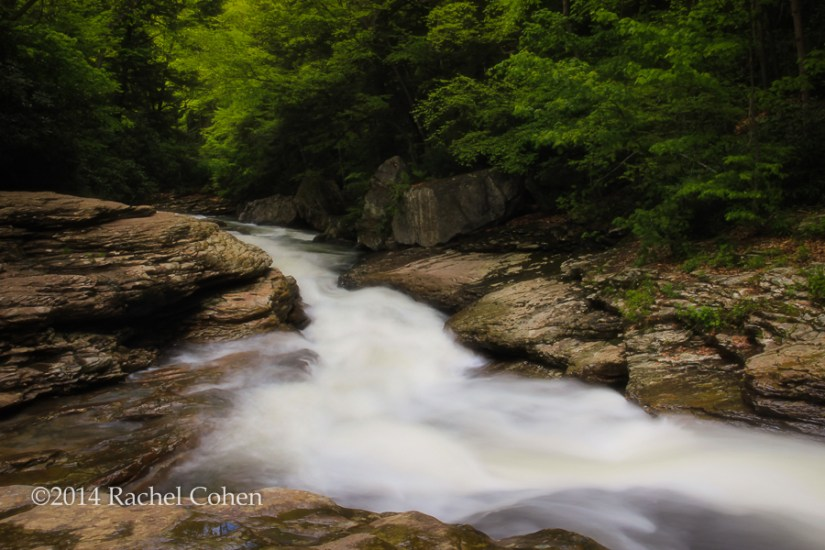 """Meadow Run"" Ohiopyle State Park, PA."