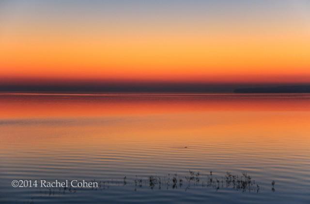 """""""Peace at Sunrise"""""""