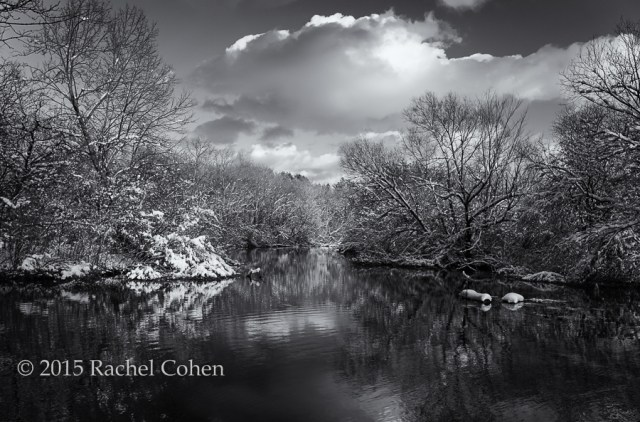 """Afternoon in Shades of Gray""   A  wonderfully moody  black and white version of  ""On a Golden Afternoon"""