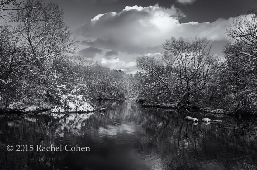 """Afternoon in Shades of Gray"" This scene in late fall with a beautiful snow just begged for black and white processing!"