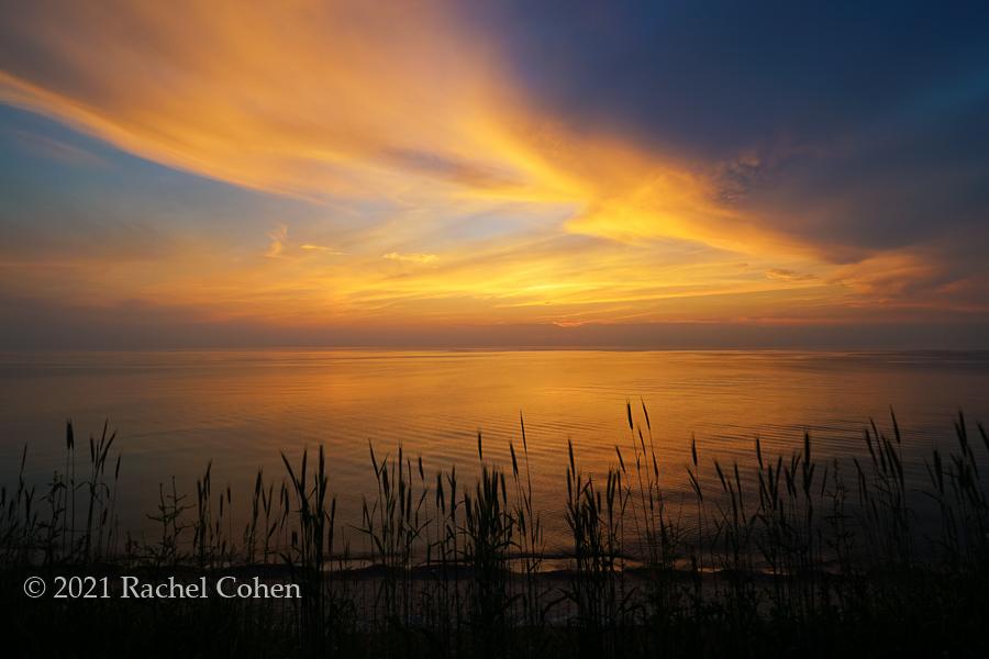 """""""Beach Grass Sunset"""""""