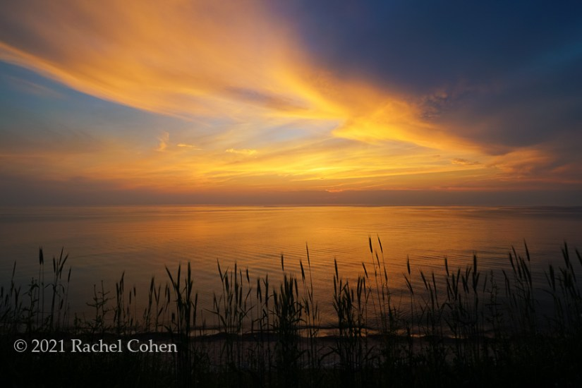 """Beach Grass sunset""  Gorgeous Lake Michigan sunset with beach grass in silhouette!"