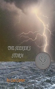 Cover of The Seeker's Storm