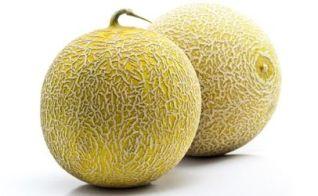 Cantaloupe-Melon-9