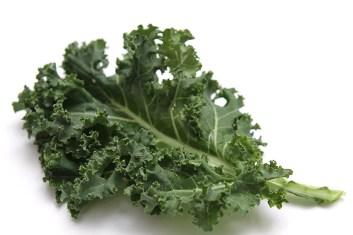 IMG_2071-Curly-kale-leaf-750