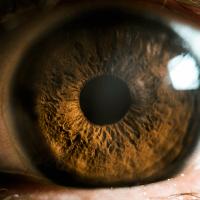 Conheça as principais causas de problemas nos olhos
