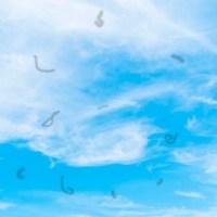 O que são essas manchas voando no meu campo de visão?
