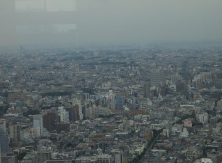 Tokyo City Hall: Taking in the View