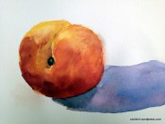another study of a peach for day 13 of the 30 paintings in 30 days challenge.