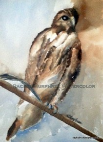 Painting of hawk perched on a metal wire