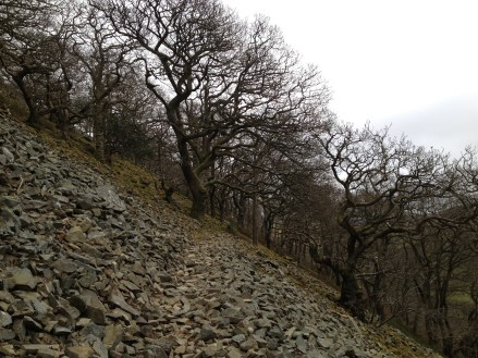 Nant y Coed hill