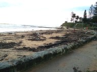 Debris is strewn all over the beach, footpath and car park