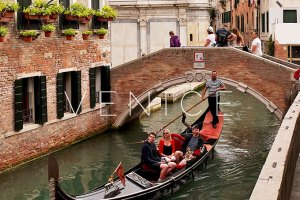 Venice: The Gondolas
