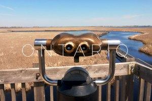 Ontario: Point Pelee