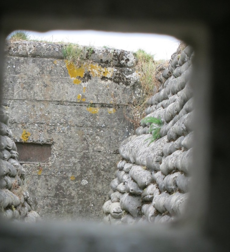 A view in a restored trench