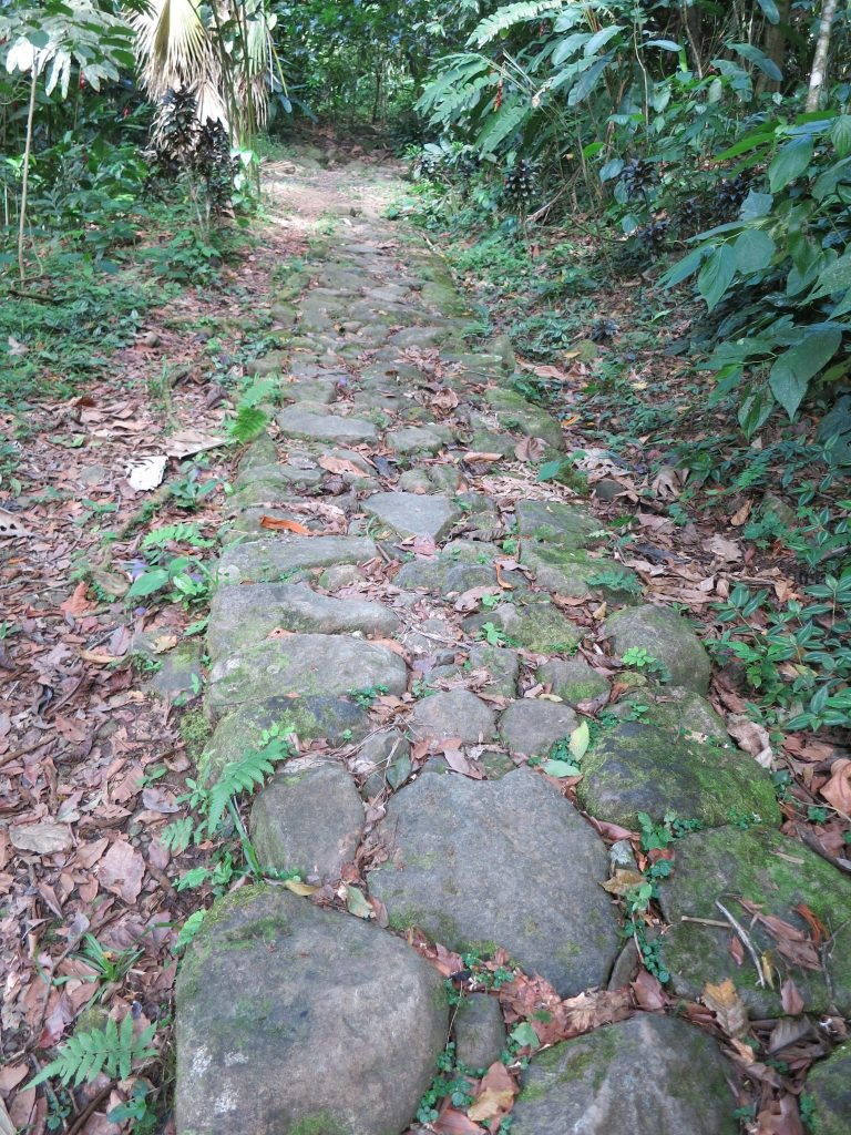 a stone path built by slaves on La Griviliere coffee plantation in Guadeloupe