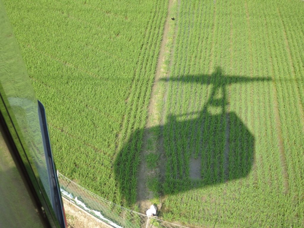 shadow of our cable car on rice paddies below in Himeji
