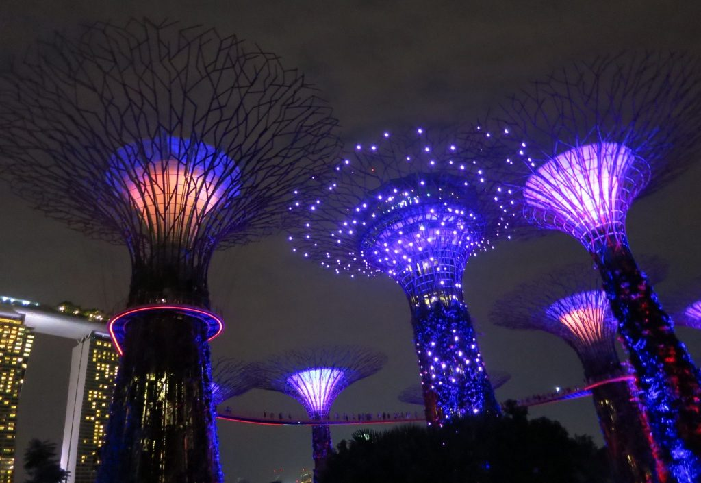 a snapshot of the Supertrees during the Garden Rhapsody show in Singapore