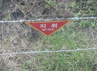 A Tourist to the DMZ