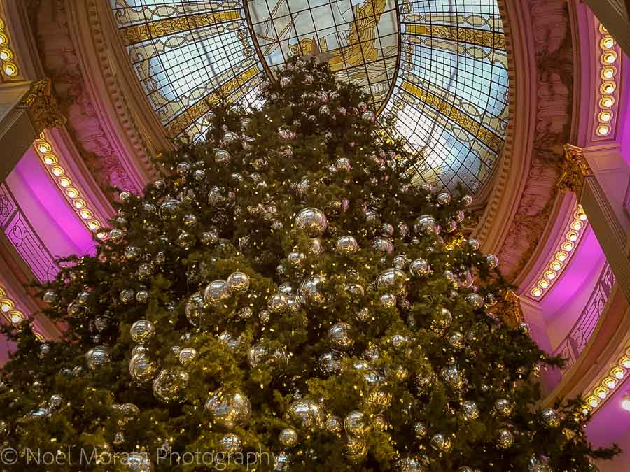 The huge tree at Neiman Marcus department store in San Francisco, looking up at its peak. It's covered with gold and silver colored balls, and the oval, stain-glass ceiling is visible above it.