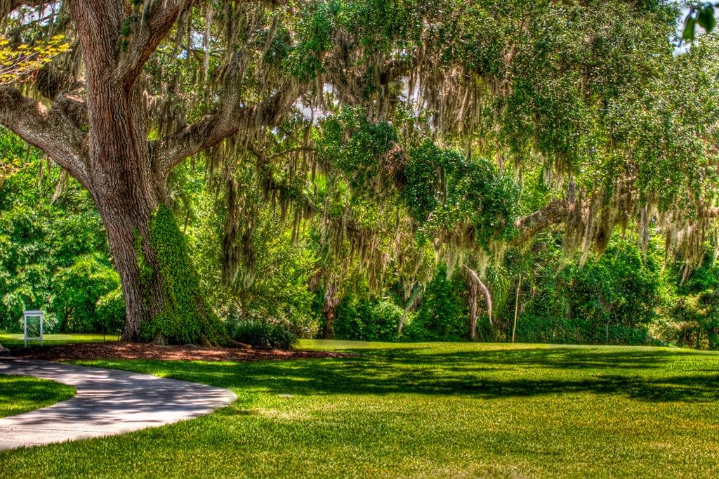 Leu Garden in Orlando, Florida