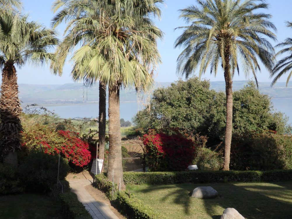 The garden on the Mount of Beatitudes, with the Sea of Galilee visible in the distance.