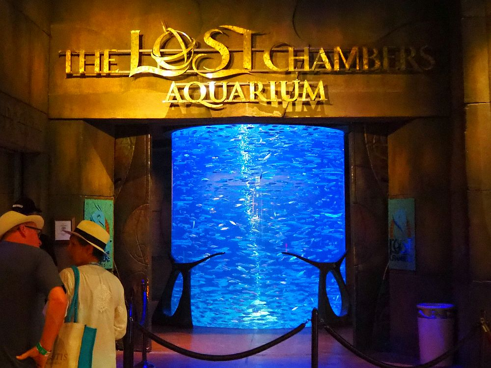 """The entrance says """"The Lost Chambers Aquarium"""" above the door. Visible in the entrance is a large floor to ceiling tank lit in blue with lots of silver fish swimming in a school."""