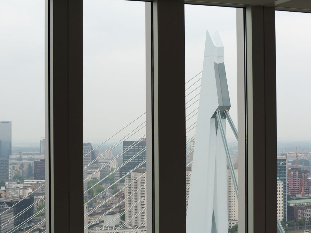 The Erasmus Bridge as seen from the 31st floor as part of the De Rotterdam Tour.