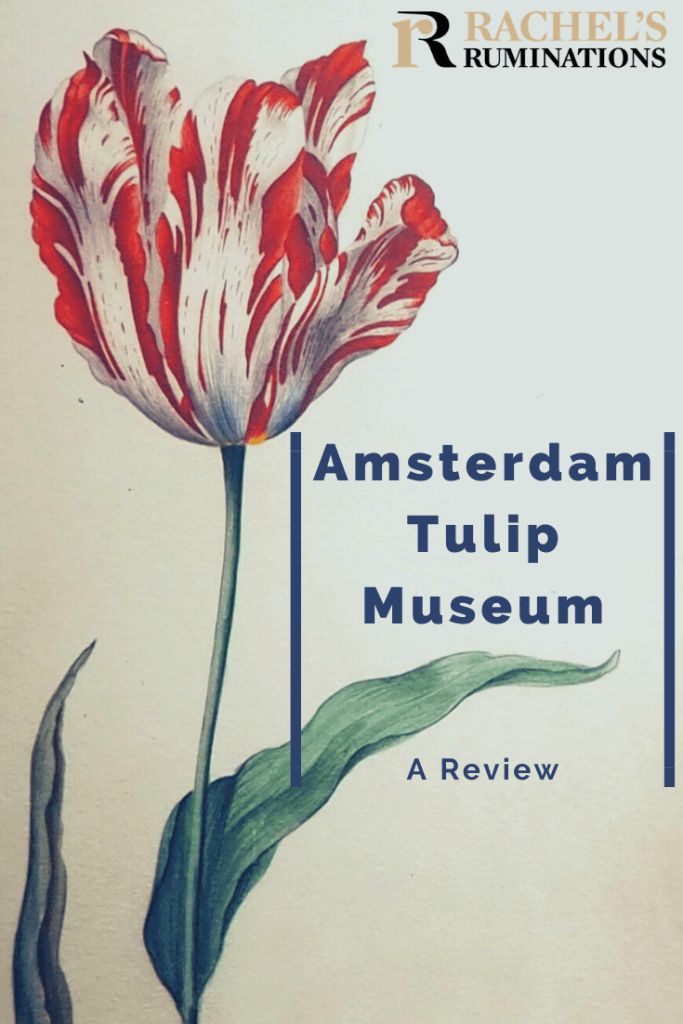 """Pinnable image Text: Amsterdam Tulip Museum: A review (and the Rachel's Ruminations logo) Image: the """"broken"""" red tulip"""